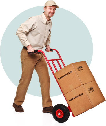 Office Movers at Removal To