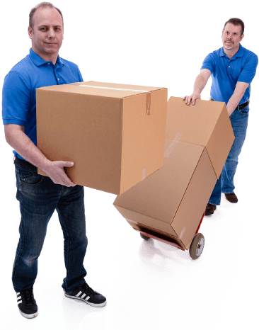 Expert Removals Services